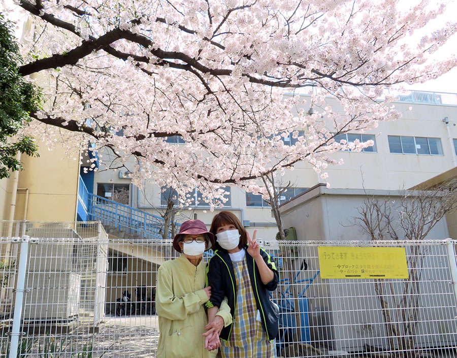 満開の桜で一句