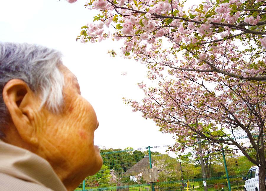 ネスト流! 春の楽しみ方